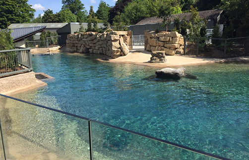 Dublin Zoo Project completed by Hayes Higgins Partnership